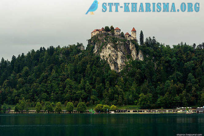Beauty Lake Bled i Slovenien